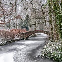 winter in mijn stad