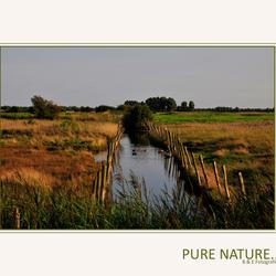 Pure Nature...
