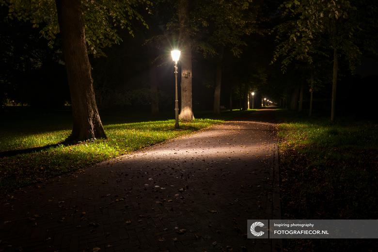 Een eenzame avond in het park - Het gevoel dat je door iemands anders ogen kijkt op een windstille, frisse zomeravond terwijl de herfst zijn intrede d