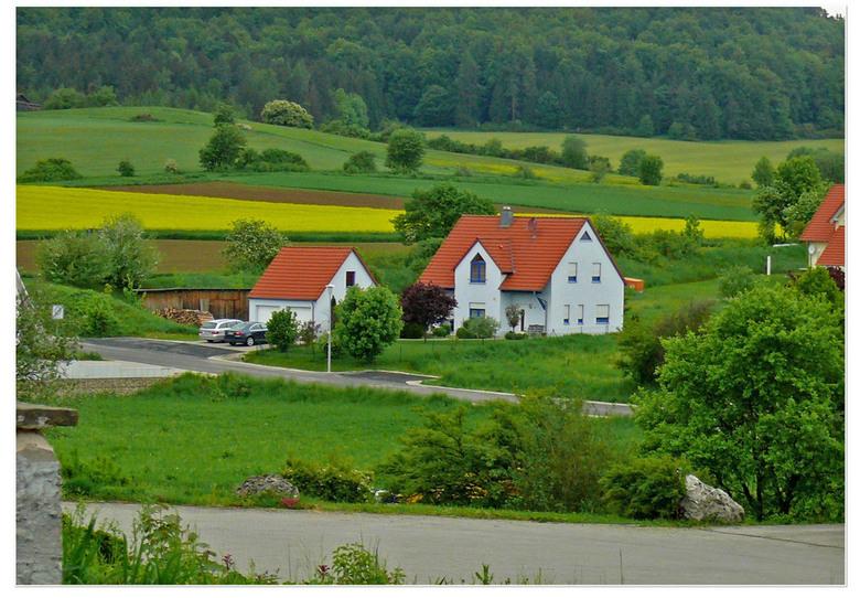 Koolzaad -   het koolzaad bloeide in die tijd  en gaf prachtige kleuren aan het landschap  gr bets en fijn weekend