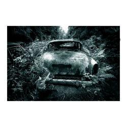 Car Graveyard (5)