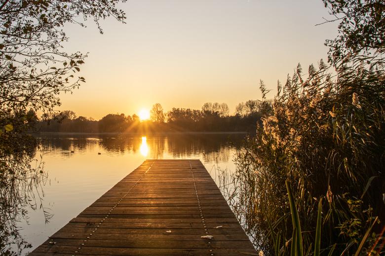 Haarlemmermeerse bos 10-11-19 (26) - Uitzicht over een steiger met zonsondergang in het Haarlemmermeerse bos in Hoofddorp