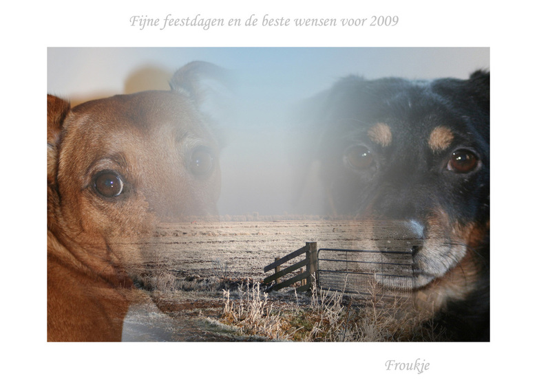 fijne feestdagen - Voor alle zoomers heel fijne feestdagen,  geluk ,liefde en gezondheid toegewenst voor 2009 <br /> Groetjes Froukje