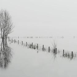 hoogwater aan de Rijn