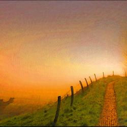 polderdijkje bij ondergaande zon en nevel !...