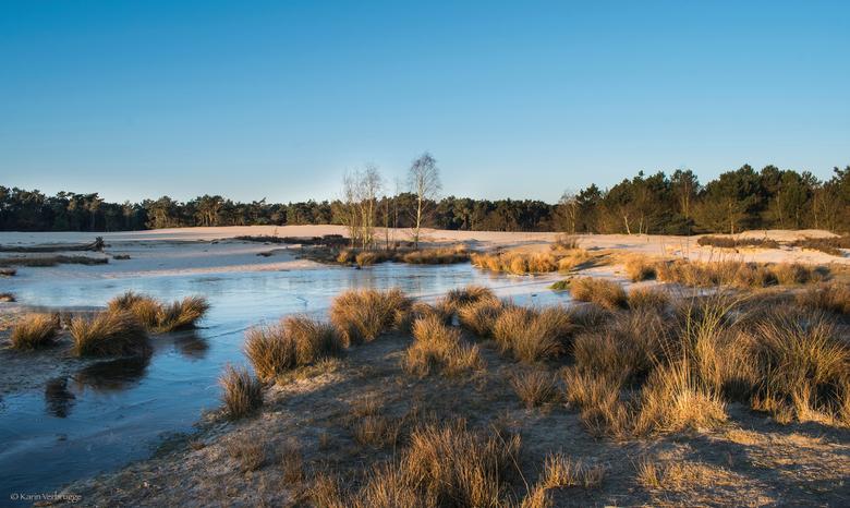 Ochtendlicht - Ook deze is van gisterochtend in de Loonse en Drunense duinen met Brigitte (Puck101259). De zonsopkomst was bedroevend saai, maar het l