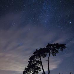 aekingerzand bij nacht