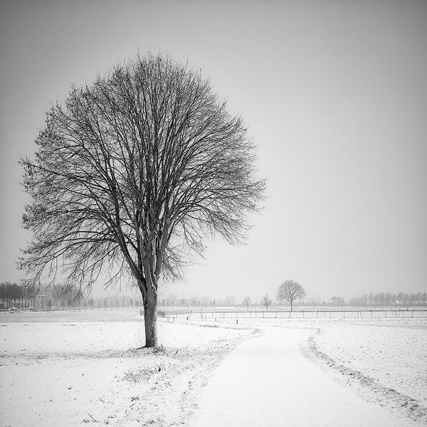 Wintervast - Landweg in sneeuw.