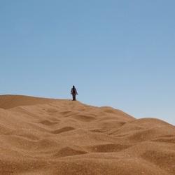 Sjokken op de zandduin