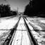 White Mountains tracks