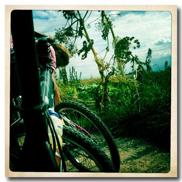 MTB Riders  - Terug van een vakantie met mountainbiking.