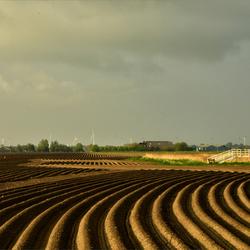Aardappelland.