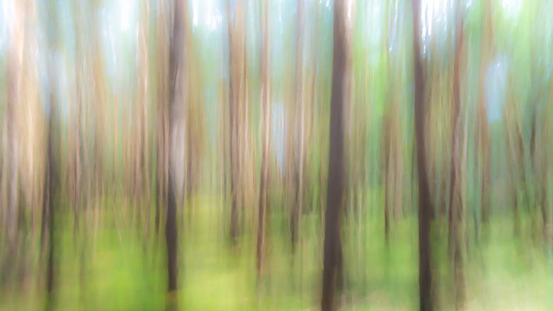 Magical And Blurry Fine Art - Ik had eens gelezen over Magical And Blurry Fine Art. Met statief beweging in je foto maken door gebruik te maken van ee