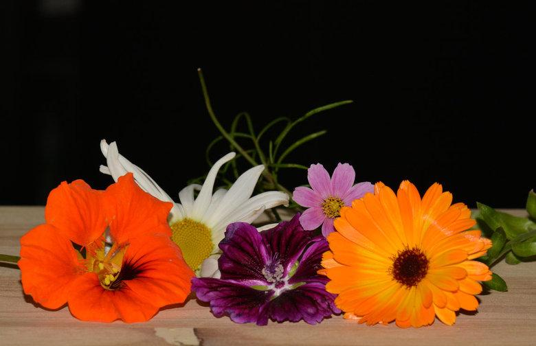 November selectie!! - Dit zijn allemaal bloemen die op dit moment , half November nog in mijn tuin bloeien!!!!!