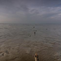 20180407-Moddergat-Friesland-Waddenzee-0038
