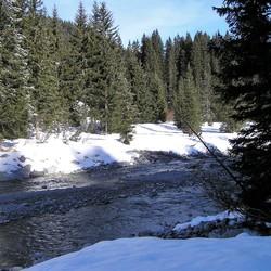 P2160026 Wintersfeer omg LECH  16 feb  2007