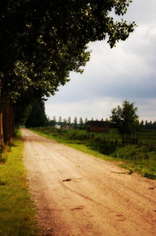 country-farm-road - Vanmiddag geschoten, <br /> <br /> bewerkt met photoplus, net zoiets als photoshop, maar dan goedkoper.<br /> <br /> bedankt v