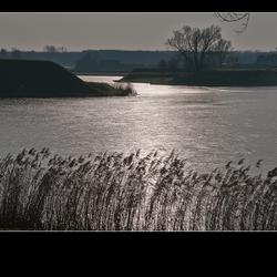 de Maas bij Heusden