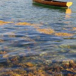 Verlaten bootje op meer