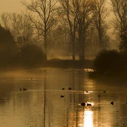 ochtendgloren aan de vogelhut