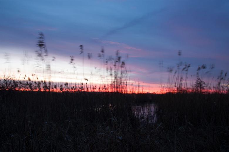 "horizon - Gisterochtend een prachtige brandende zonsopkomst. Ik was al vroeg in het Easterskar, dus kon hem mooi even meepikken <img  src=""/images/smi"