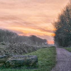 Trein zonsondergang en mist