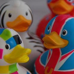 Duckkies