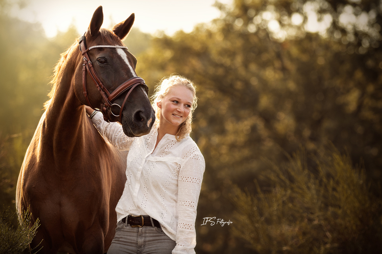 Prachtig licht met Paard & Mens -