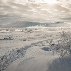Winter wonder IJsland