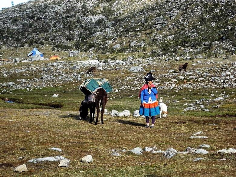 Reisgezelschap in de Andes - Dragers, paarden, ezels, honden en heel veel kleuren waren er in het reisgezelschap. Op weg naar de Alpamayo, wat ik pers