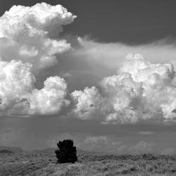 USA: omgeving Grand Tetons