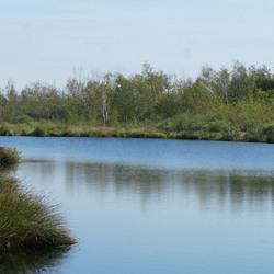Nationaal Park De Groote Peel