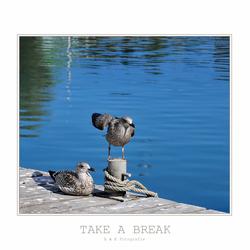 Take a Break..