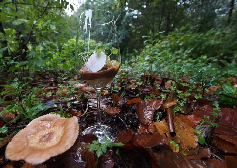 """Herfst Choco Ananas Toet - Foto,s maken..voor de website...www.landgoedgroenendaal.nl <br /> Herfst gedachtes...even het bos in..<img  src=""""/images/s"""
