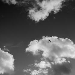 op het lucht