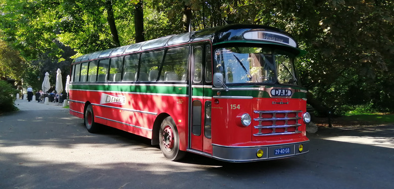 DAM bus - De N.V. Damster Auto-Maatschappij, afgekort DAM te Appingedam is opgericht in 1920. Het was een bedrijf dat van 1921 tot 1970 het openbaar v