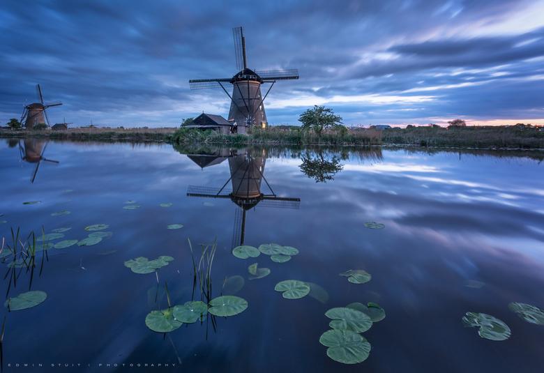 Blauw uurtje Kinderdijk - Altijd weer fijn zodra de waterlelies zich weer laten zien zodat je weer een andere voorgrond kunt kiezen.