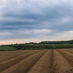 Limburgslandschap prt 2