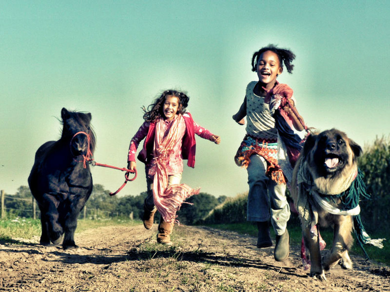 warm october day - Mijn zusje Dominique met onze Shetlandmerrie Beauty, en Dominiques vriendinnetje Giza met onze hond Gaya. <br />