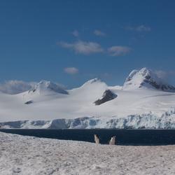 Antarctic schiereiland