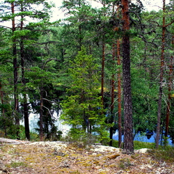 Tivedens National Park