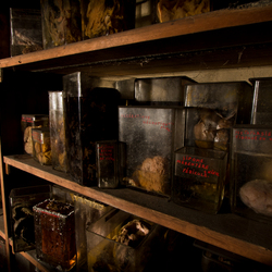 Horror Lab foto 3
