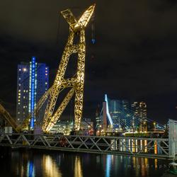 Rotterdam By Night 3