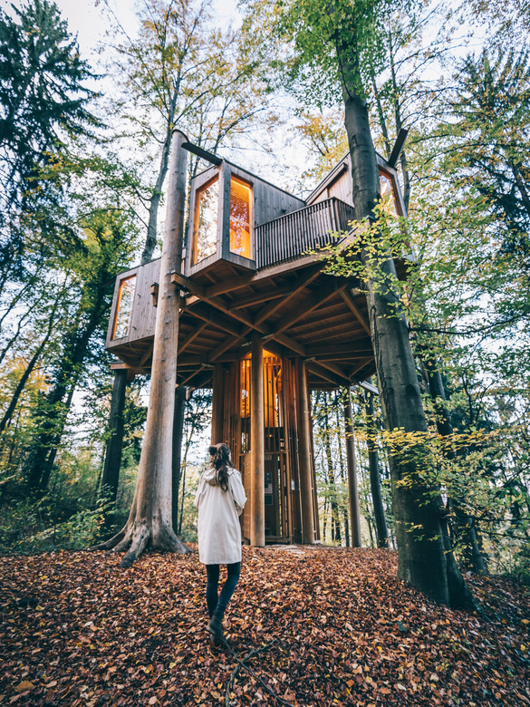 Treehouse - That Slovenia is one of the worlds most eco friendly places can be found in every corner of the country. We had a warm welcome at this tre