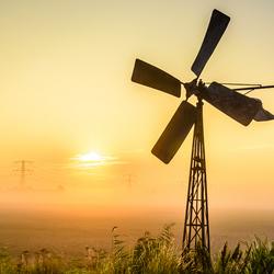 Windmolen in weiland