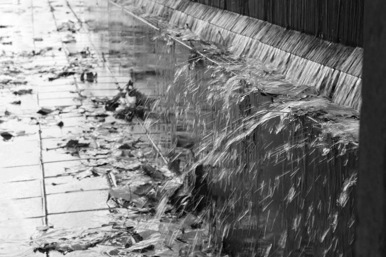water - herfst en water