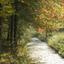 Herfst in Wulven