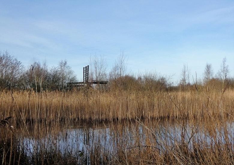 Tjasker - Tjasker in de polder