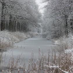 winter-2014-3