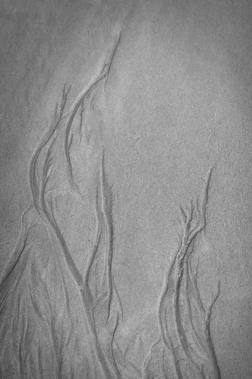 vlammen - als het water zich terugtrekt ontstaan er mooie patronen in het zand.